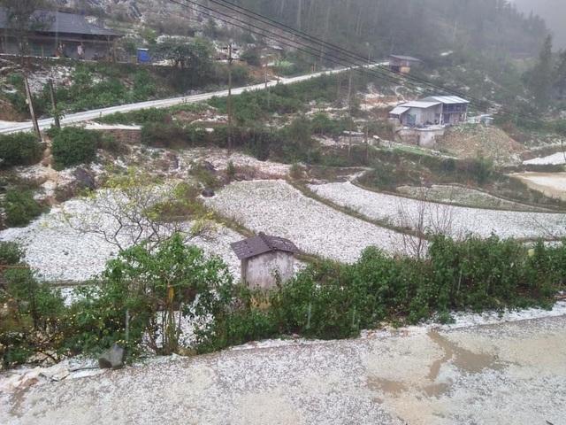 Mưa đá phủ trắng mặt đất vùng cao Cán Cấu - 3
