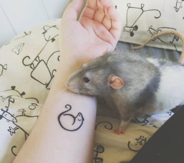Gặp gỡ chú chuột... họa sĩ - 3