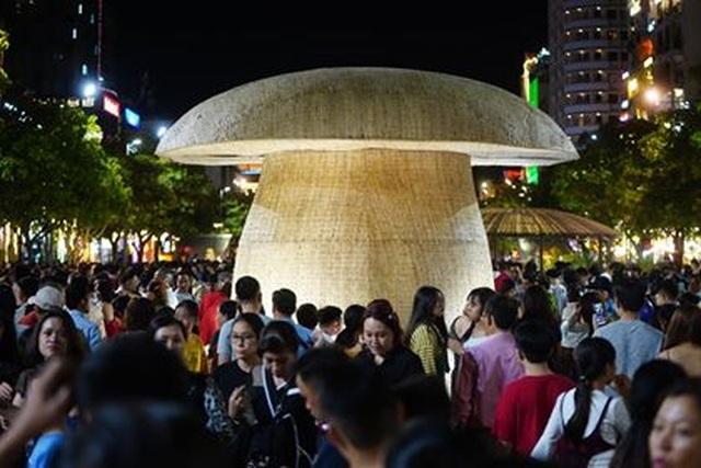 Giành giật nhau chọn chỗ chụp hình trên đường hoa Nguyễn Huệ - 18