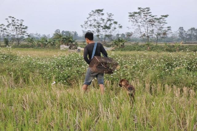 Người dân Hà Nội kiếm tiền triệu mỗi ngày từ nghề săn cu tý - 2