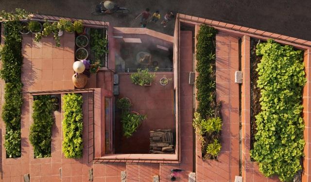"""Lạ lùng đôi vợ chồng Quảng Ngãi xây """"ruộng bậc thang"""" trên sân thượng trồng rau xanh - 2"""