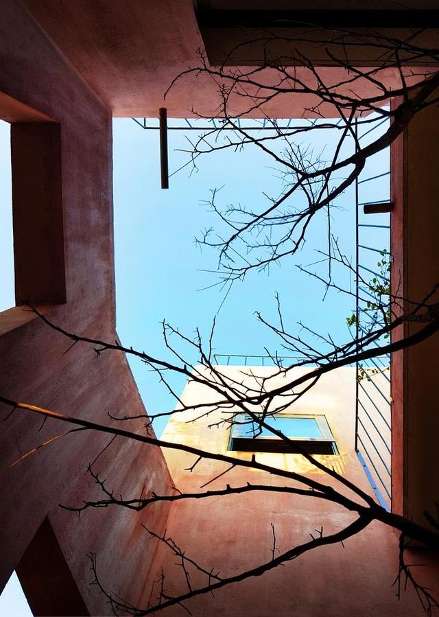 """Lạ lùng đôi vợ chồng Quảng Ngãi xây """"ruộng bậc thang"""" trên sân thượng trồng rau xanh - 9"""