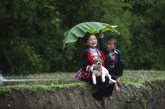 5 khoảnh khắc của Việt Nam trong 50 khoảnh khắc đẹp của tình bạn trên khắp thế giới - 1