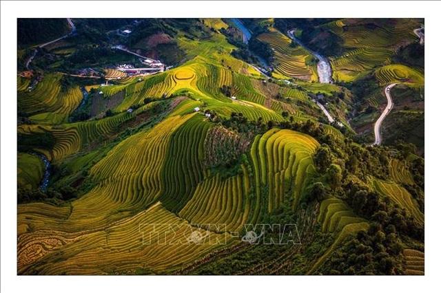 Ngắm mùa vàng trên ruộng bậc thang Mù Cang Chải - 3