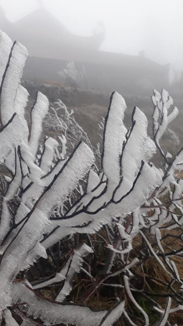 Băng tuyết phủ trắng Nóc nhà Việt Nam Fansipan - 2