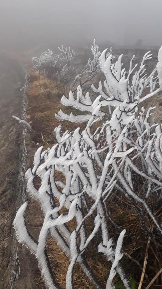 Băng tuyết phủ trắng Nóc nhà Việt Nam Fansipan - 3