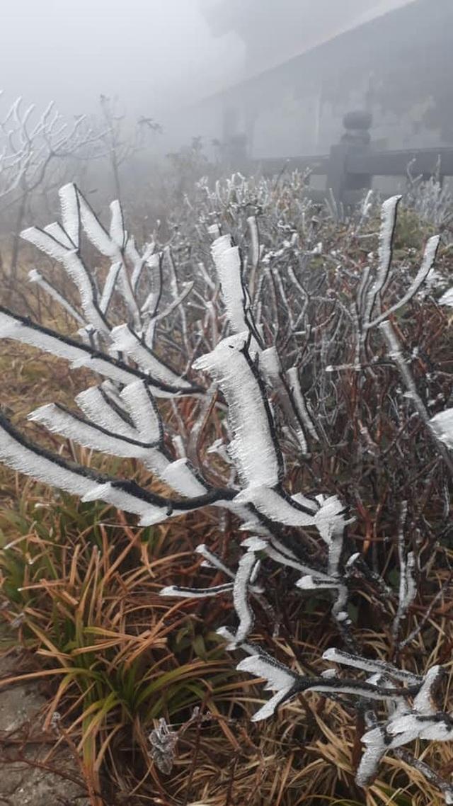 Băng tuyết phủ trắng Nóc nhà Việt Nam Fansipan - 4