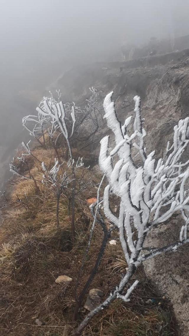 Băng tuyết phủ trắng Nóc nhà Việt Nam Fansipan - 5