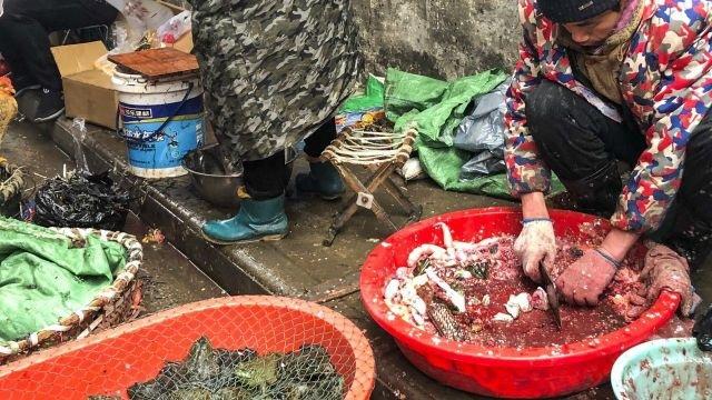 Virus corona hoành hoành, hàng Trung Quốc vào Việt Nam ảnh hưởng ra sao? - 1