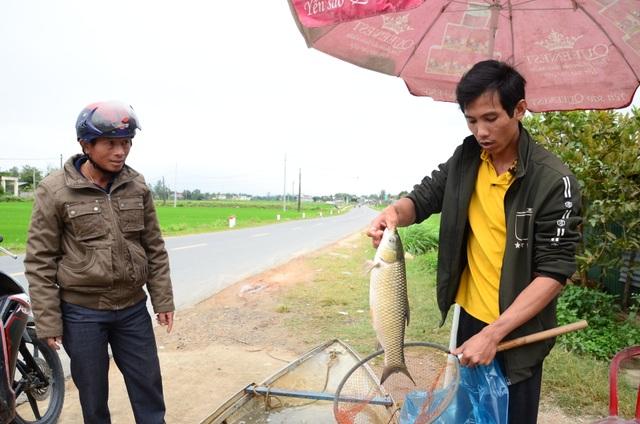 Làng nuôi cá lồng hốt bạc dịp đầu Xuân - 3