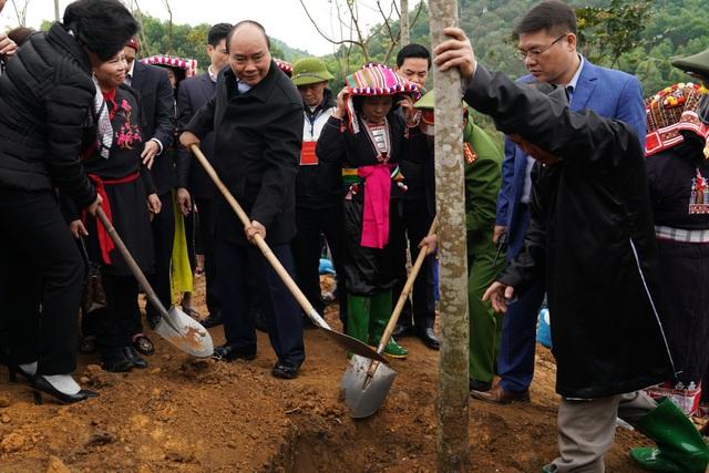 Thủ tướng nhấn mạnh mục tiêu 10 năm của ngành gỗ - 1