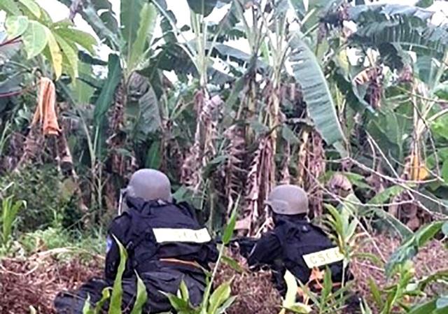 Vụ xả súng bắn chết 4 người: Công an Bình Phước tăng cường kiểm soát vùng biên - 6