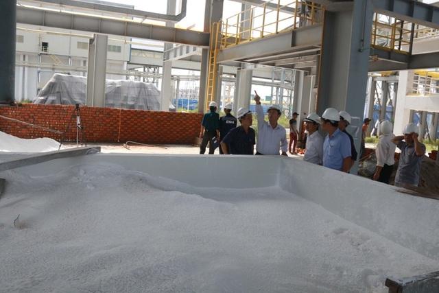 Đề nghị chưa đưa chuyên gia Trung Quốc trở lại Công ty Nhôm Đắk Nông - 1