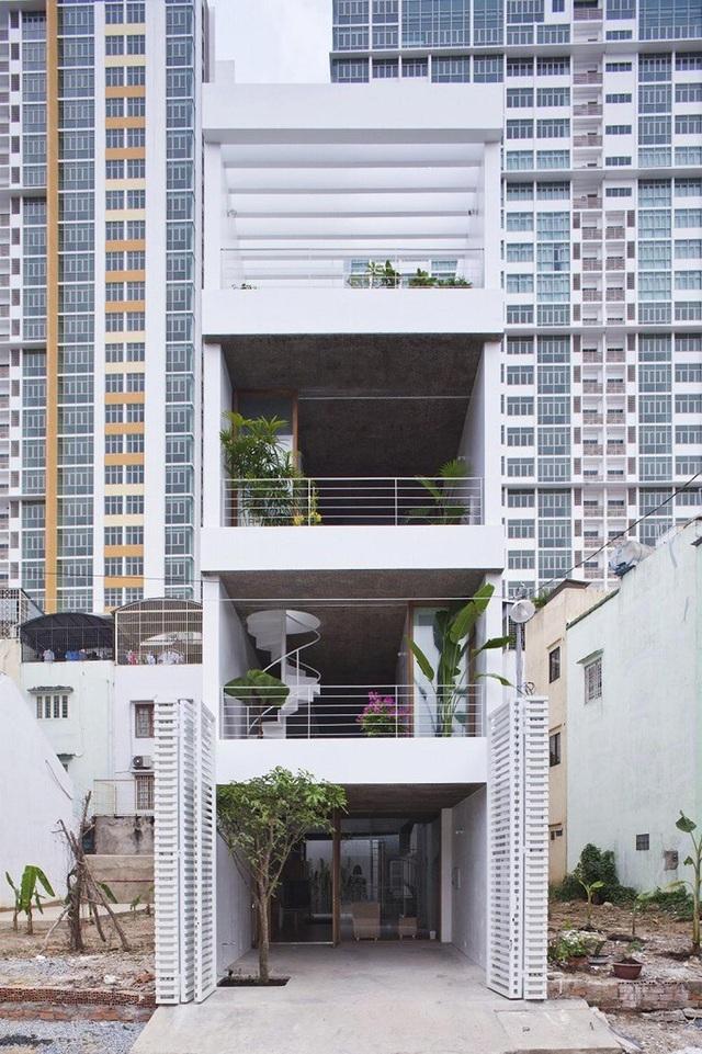 Nhà ống rộng 4m ở Sài Gòn đẹp ấn tượng nhờ trồng cây trong nhà - 1