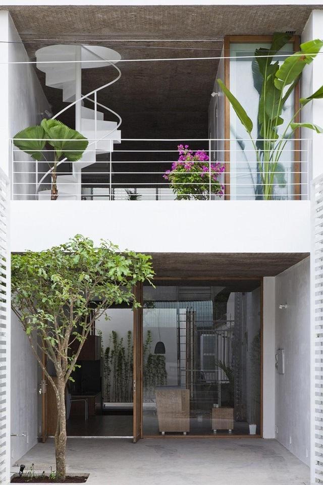Nhà ống rộng 4m ở Sài Gòn đẹp ấn tượng nhờ trồng cây trong nhà - 2