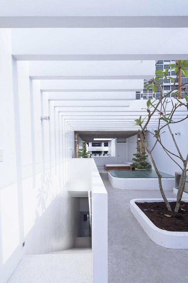 Nhà ống rộng 4m ở Sài Gòn đẹp ấn tượng nhờ trồng cây trong nhà - 4