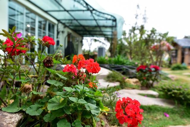 Mãn nhãn biệt thự vườn rộng 100m2 với hồ cá Koi đẳng cấp ở ngoại thành Hà Nội - 4
