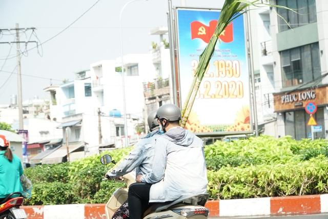 Người Sài Gòn đổ xô mua mía cầu tài đầu năm - 9