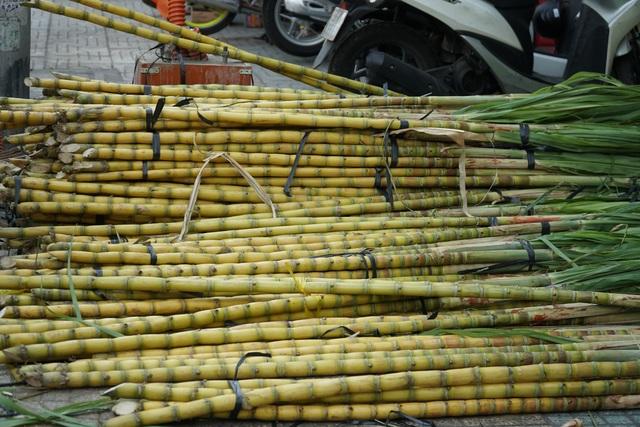 Người Sài Gòn đổ xô mua mía cầu tài đầu năm - 6