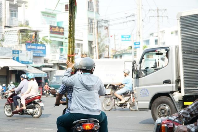 Người Sài Gòn đổ xô mua mía cầu tài đầu năm - 10