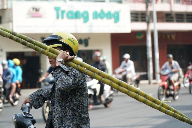 Người Sài Gòn đổ xô mua mía cầu tài đầu năm - 8