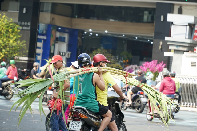 Người Sài Gòn đổ xô mua mía cầu tài đầu năm - 7