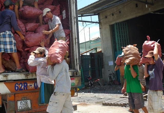 Đại dịch virus corona làm nông sản miền Tây rớt giá thảm hại - 3