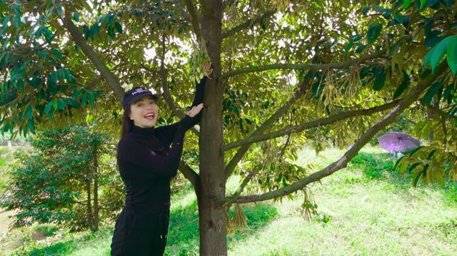 """Nông trại tiền tỷ có suối chảy róc rách của """"mỹ nhân hàng hiệu"""" trong showbiz Việt - 4"""