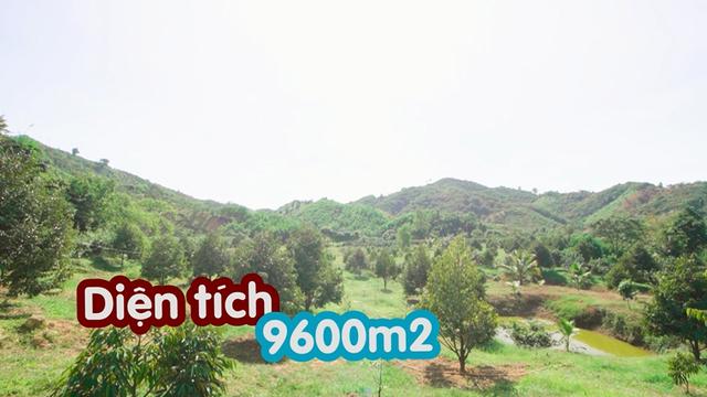 """Nông trại tiền tỷ có suối chảy róc rách của """"mỹ nhân hàng hiệu"""" trong showbiz Việt - 1"""