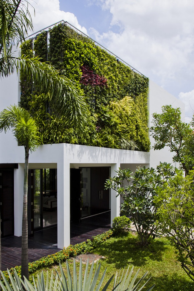 Biệt thự ở ngoại thành Sài Gòn phủ kín cây xanh, ai nhìn cũng mê mẩn - 2