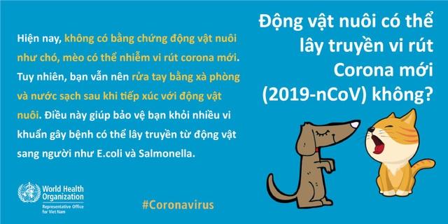 Virus corona có lây truyền qua động vật nuôi, thực phẩm? - 2
