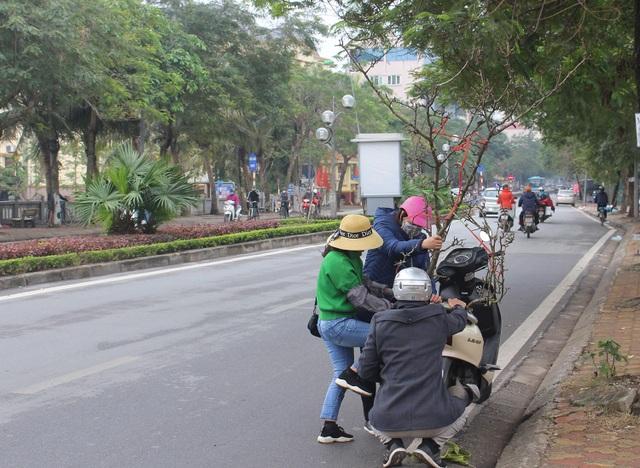 Đào phai, mai tàn, dân Hà Nội đổ xô đi mua hoa lê rừng - 5