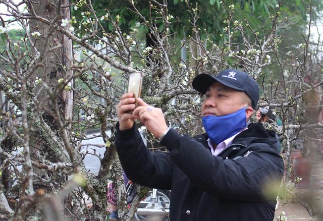 Đào phai, mai tàn, dân Hà Nội đổ xô đi mua hoa lê rừng - 2