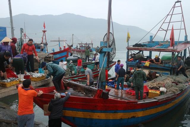 Vươn khơi ngày Rằm tháng Giêng, ngư dân trúng lộc biển - 1
