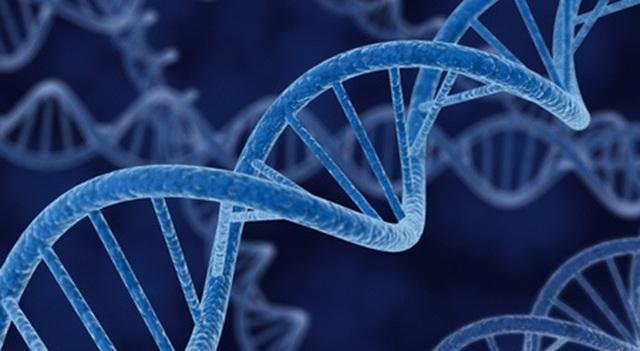 Ung thư đại trực tràng có do di truyền? - 1