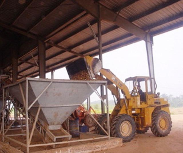 Nhà máy chế biến tinh bột sắn xuất khẩu Bình Định bị tuýt còi lần 2 - 1