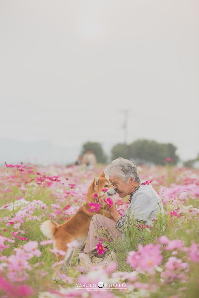 """Gác lại căng thẳng để nhìn ngắm cuộc sống yên bình của """"bà cụ và cún cưng"""" - 18"""