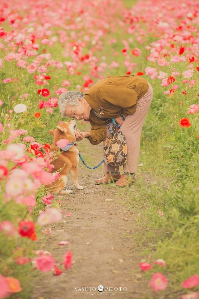 """Gác lại căng thẳng để nhìn ngắm cuộc sống yên bình của """"bà cụ và cún cưng"""" - 2"""