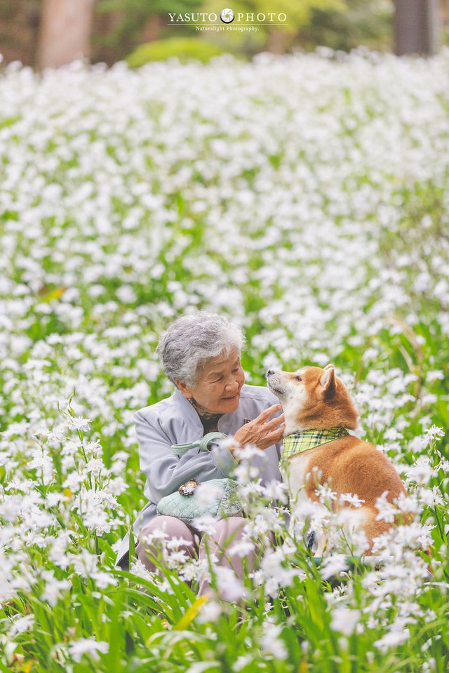 """Gác lại căng thẳng để nhìn ngắm cuộc sống yên bình của """"bà cụ và cún cưng"""" - 5"""