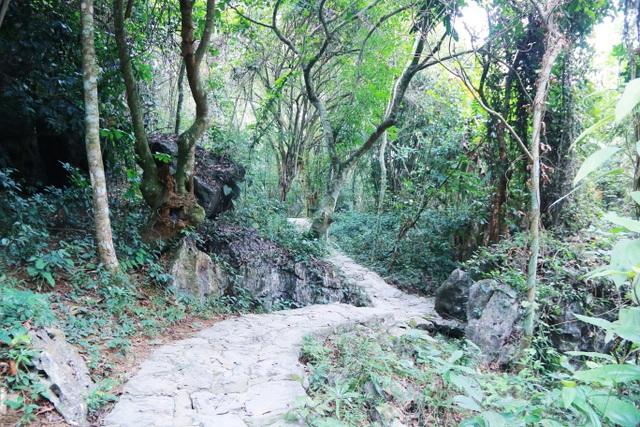 Phượt bộ khám phá vườn chim Thung Nham giữa vùng di sản Tràng An - 7
