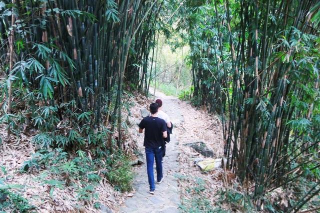 Phượt bộ khám phá vườn chim Thung Nham giữa vùng di sản Tràng An - 6