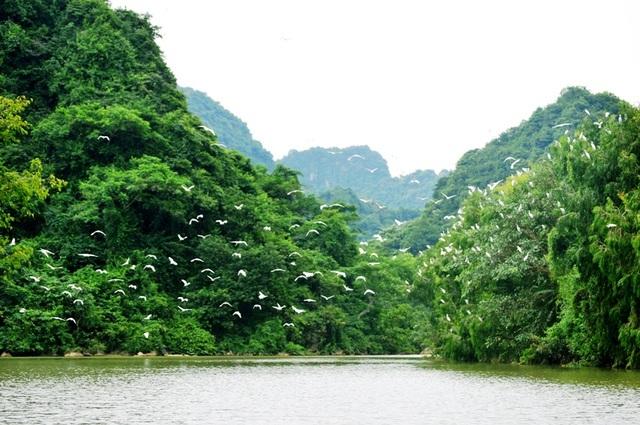 Phượt bộ khám phá vườn chim Thung Nham giữa vùng di sản Tràng An - 1