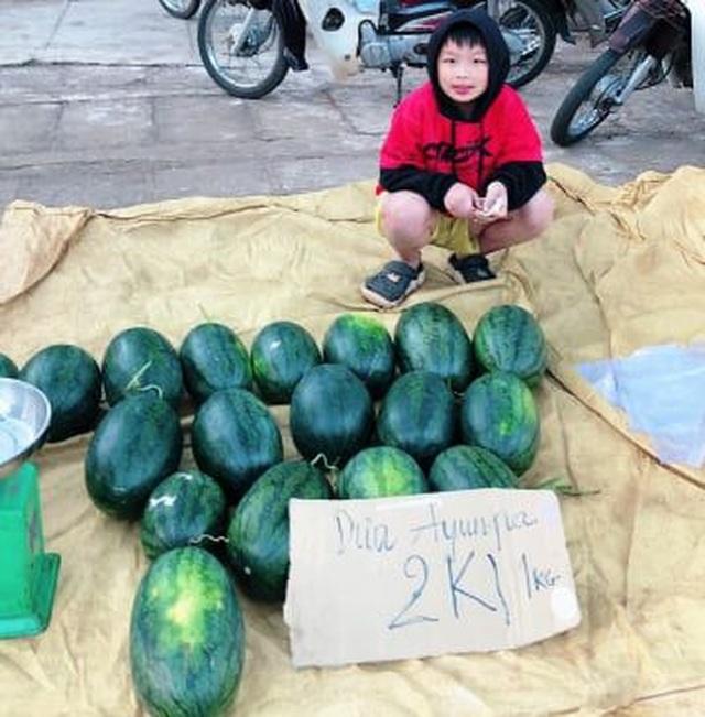 Gia Lai: Hàng chục tấn dưa hấu được giải cứu với giá cao - 2