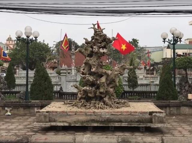 Khúc củi khô 4 tỷ đồng của đại gia đồng nát Hà Nội - 1