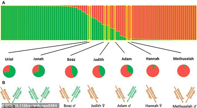 Trồng thành công cây chà là từ hạt giống 2000 năm tuổi - 3