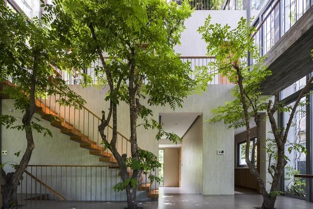 Nhà 3 tầng ở Sài Gòn khiến báo Tây bất ngờ vì đẹp như rừng nhiệt đới - 5