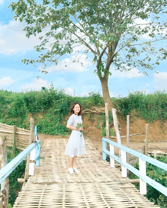 Giới trẻ háo hức check-in với cầu tre và cây cô đơn đẹp tựa phim - 8