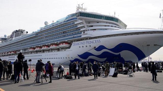 Hướng dẫn viên đoàn khách trên tàu Diamond Princess đã quay lại khu cách ly - 1