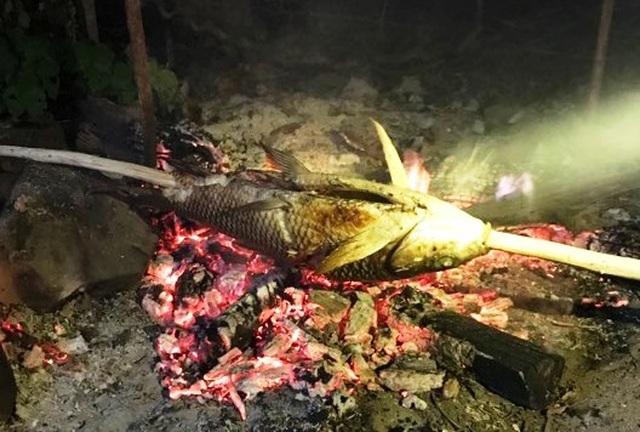"""Gia Lai: Theo chân thợ câu săn """"thủy quái"""" trên lòng hồ Ia Mlá - 4"""