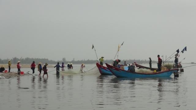 Ngư dân Quảng Bình trúng đậm cá trích ngày mở biển - 1